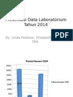 Presentation1 Lab