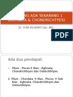 2. IKAN YG ADA SKR 1(AGH &CHON).ppt