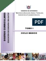 Tomo_01_-_Ciclo_Basico(1)