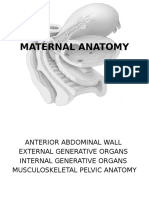 Maternal Anatomy
