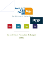 Controle Execution Du Budget