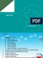 Endokrinologi, Fitri Nengsi Astuti, 70600116029