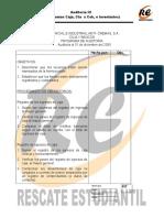 Audit3_ProgAudit