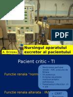 81_Nursingul_aparatului_excretor_al_pacientului_critic.pptx