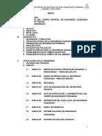 Plan 2015-2018 Local Pachia Seguridad Ciudadana