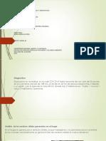 Fase 4. Transformacion de Materia Organica