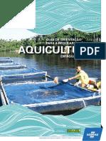 Guia de Orientacao Para a Regularizacao Da Aquicultura Em Aguas Da Uniao 1