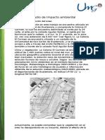 Estudio de Impacto Ambiental z 12