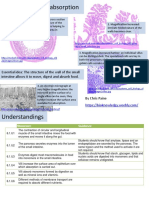 Biology - Digestion and Absorption Revision Notes.pdf