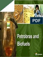 Petrobras_Biofuels_May2007.pdf