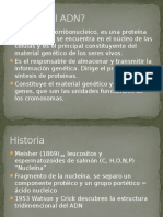 Genetica Estructura Del ADN
