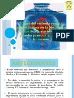 Papel Del Sistema Renina Angiotensina en La Respuesta