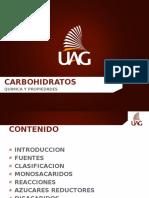 2.- CARBOHÍDRATOS