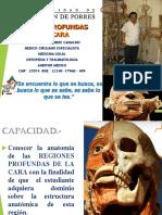 CARA REGIONES PROFUNDAS DR JAAC.pdf