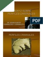 Perfiles criminales