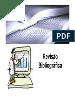 03_Revisao_Bibliografica