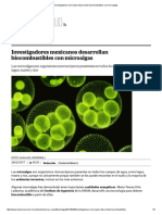 Investigadores Mexicanos Desarrollan Biocombustibles Con Microalgas