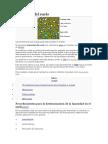 Humedad_del_suelo.docx;filename= UTF-8''Humedad del suelo