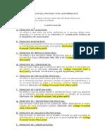 Principios Del Proceso Civil Guatemalteco