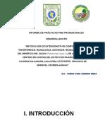 Diapositiva de Informe Inicial.
