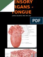 sensory organs - tongue