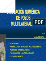 pozos mutilaterales