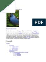 Cuencas Rios Conceptos
