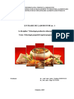 Lucrare_laborator_1 (1).pdf