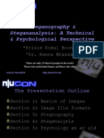 Sempersol Nullcon Reena Prince Presentation on Steganography
