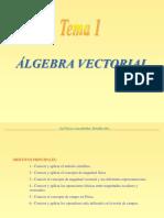 Tema 1 - Algebra Vectorial