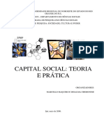 Livro Capital Social 2006