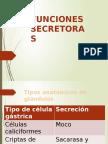 funcion secretora