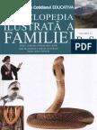 Enciclopedia Ilustrata a Familiei - Vol.13