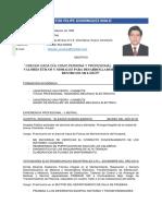 Curriculum Dominguez Malo Victor Felipe