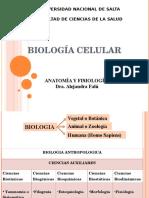 2 - Biologia Celular