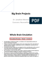Big Brain Projects