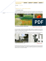 1.1 encuadre y tema.pdf