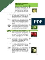 dozrijevanje jabuka