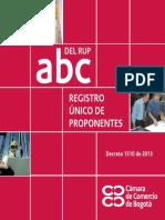 manual obtencion RUP.pdf