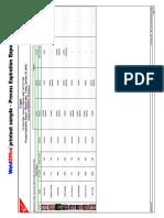 Process Expiration Report.pdf