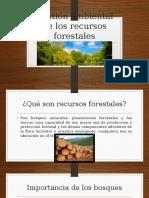 Gestión Ambiental de Los Recursos Forestales