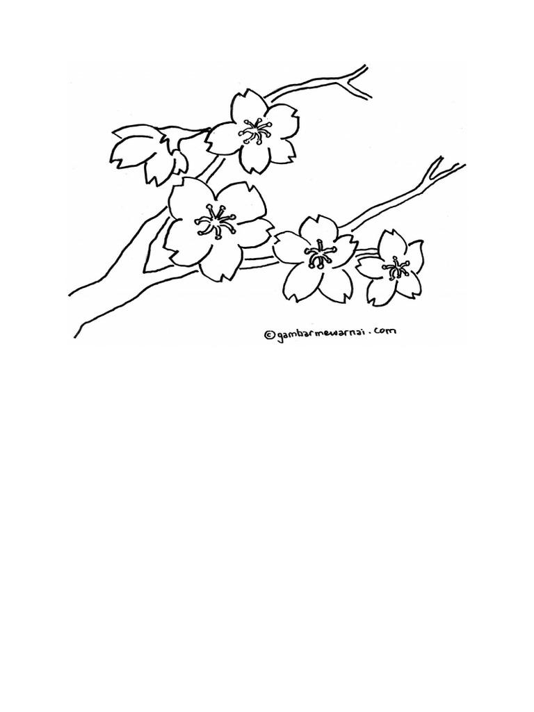 Unduh 84+ Gambar Bunga Sakura Simpel Paling Cantik HD