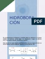 HIDROBORACION