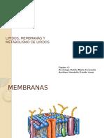 Lipidos, Membranas y METABOLISMO de lipidos