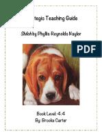 strategic teaching guide final copy