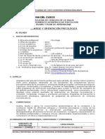 Silabo Consejo y Orientación Psicológica - 06.02. 2017 - i (1) (1)