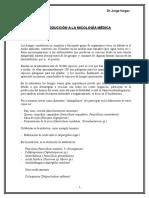 texto micologia 2013