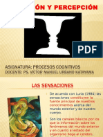09._SENSACION_Y_PERCEPCION