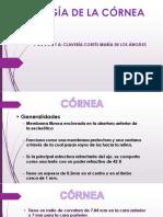Patología de La Cornea