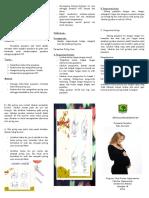 Leaflet Perawatan Payudara Pd Ibu Hamil